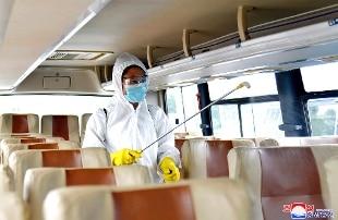 Coronavirus, Protezione civile pubblica i verbali desecretati del Cts