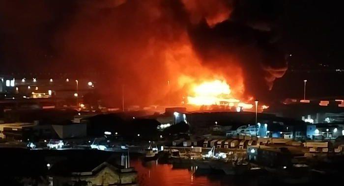 Rogo porto Ancona: De Micheli, daremo il necessario