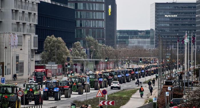 Covid: Danimarca, allevatori visoni protestano con trattori