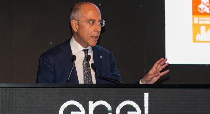 Rete Unica:Governo preme su Enel, con Covid è urgente