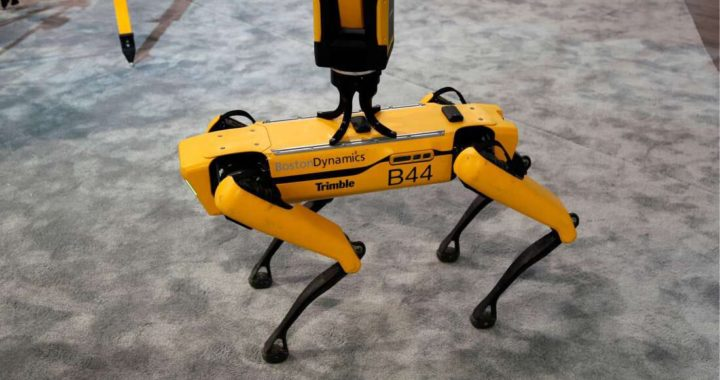 Robot-dog a caccia di radiazioni