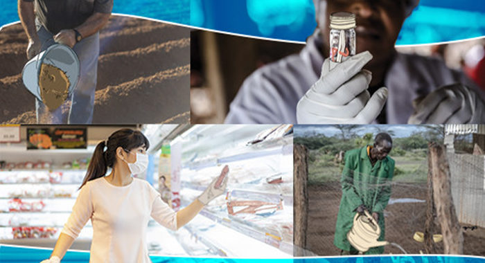 """Webinar """"Action and partnership on AMR to ensure a coordinated One Health approach in Europe and Central Asia"""""""