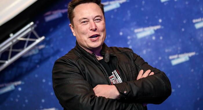 Esperimento di Musk, scimmia gioca ai videogame col pensiero