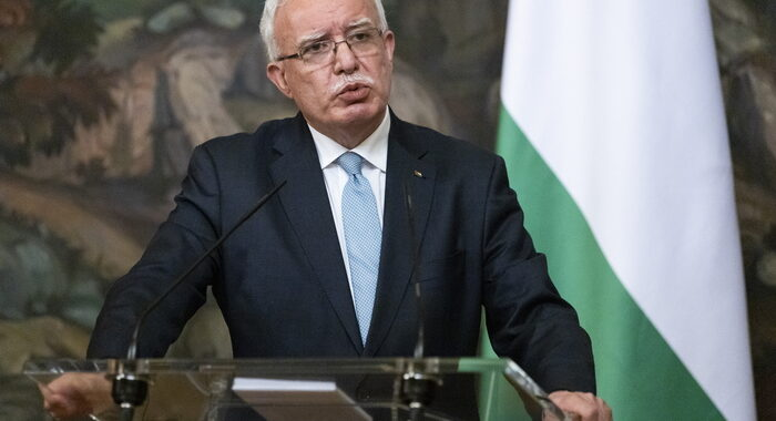 Palestina a Onu, 'quanti morti servono per la condanna?'