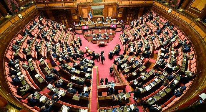 Green pass: interrogazione Senato,punire aggressori cronista