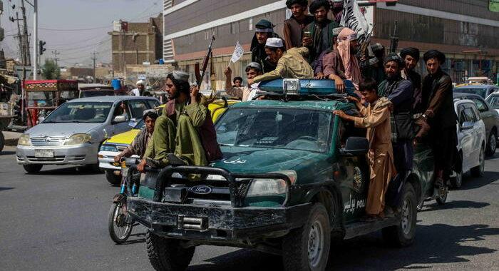 Al Qaida si congratula con i talebani per la 'vittoria'